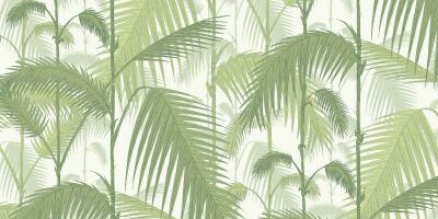 Palm-Jungle-Cole-&-Son